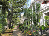 The Garden District in New Orleans - well preserved mansions from the 19th century