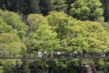 Pedestrain suspension bridge to the Gassho-zukuri Village in Shirakawa-go - seen while traveling from Takayama to Karazawa
