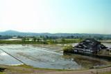 Traditional rice paddies - seen while traveling from the Gassho-zukuri Village in Shirakawa-go to Kanazawa