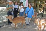 Judy, Roland, Sarah, Norma and deer near the path to Kasuga Taisha (a Shinto shrine) in Nara Park in Nara