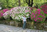 Judy near azaleas at the entrance to Kenroku-en Garden in Kanazawa