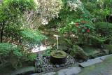 The Stone Wash Basin Tsukubai for the Tearoom Zoroku at the Ryoanji Temple in Kyoto