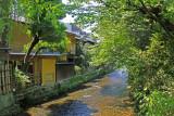 Rear of some ochya (Geisha/Geiko houses) on the Shirakawa River in the Gion (Geisha/Geiko) Distirct in Kyoto