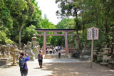 Torii (gate) on the path to Kasuga Taisha (a Shinto shrine) in Nara Park - stone lanterns line the path