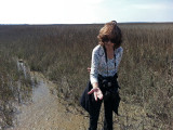Judy examining insects in a sea marsh - part of our private, guided tour of the marsh - Tybee Island