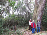 Left to right: Mary Louise, Renee and Judy at the Savannah National Wildlife Refuge