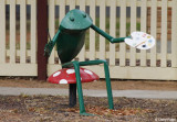 1141-balranald-frog.jpg
