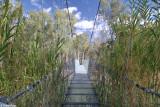 5435-balranald-swing-bridge.jpg