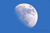5DM36546 moon edit with name small.jpg