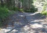Lava Creek Trailhead / FS 46 Road