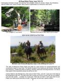 NICKER NEWS JULY2013-6.jpg