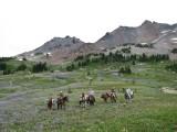 BCHW-LCC Packers - Goat Rocks.JPG