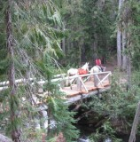 Danielle - Goat Creek Bridge.JPG