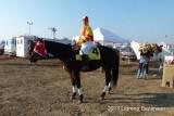 HorseRacerBreederCup#380.jpg