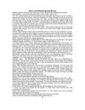 NICKERNEWSMay2014-006.jpg