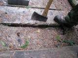 12 - Broken Plank.JPG