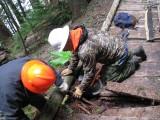 13 - Removing Broken Plank.JPG
