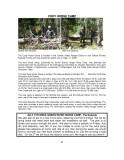 NICKER NEWSJULY2014-002.jpg