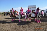 PinkLadies-247-318-325-655-840.jpg