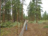 10 - Hanging Fence1.jpg