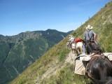 4 - Goat Mt Trail.JPG