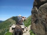 5 - Goat Mt Trail.JPG