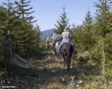Trail Cleared