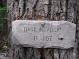 2 - Dark Meadow.JPG