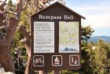 Bumpass Trail