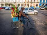 P3210418-Interflora-Cuba-Style.jpg