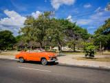 P3272280-orange-deluxe.jpg