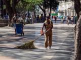 P4020963-Sweeper.jpg