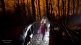 Promenons nous dans le bois... pendant que le loup n'y est pas!
