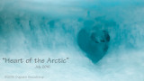 Heart of the Arctic Expedition