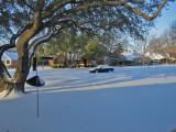 snow on my birthday2075-1024.jpg