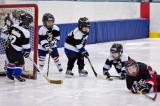 All future NHLers.