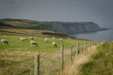 Bay Ness, Along the North Sea