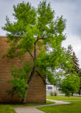 Strathcona Composite High School