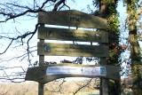 Lôn Goed Trail