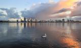 Pelican on tthe Swan River at Sunrise, 29th June 2016