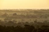 eastern savannah 2