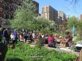 Ikebana Event -  LaGuardia Corner Gardens May 4, 2014