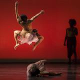 Dance Canvas 2016
