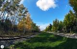 Track Trail