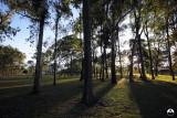 La Sabana Park