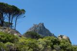 D40_2913F Tafelberg (Table mountain).jpg