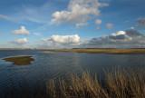 D40_2444F Lauwersmeer.jpg