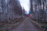D4S_7065F Finland.jpg