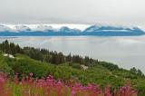 D4S_8088F Alaska.jpg