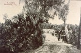 Early Whitaker Bayou bridge.jpg